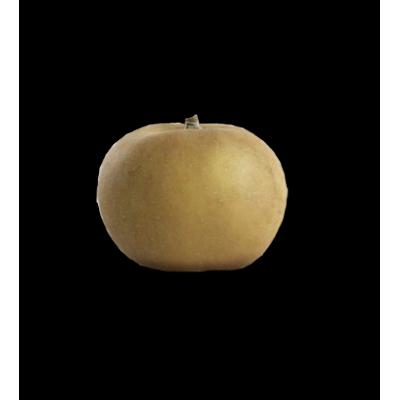 Pomme Canada gris