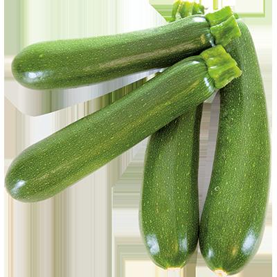 Courgette verte