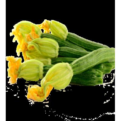 Courgette fleur