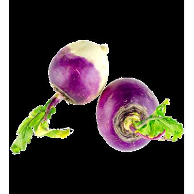 Navet violet